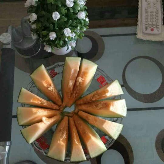 切西瓜分割器 不锈钢水果分割器 哈密瓜去核切片器 绿色 晒单图