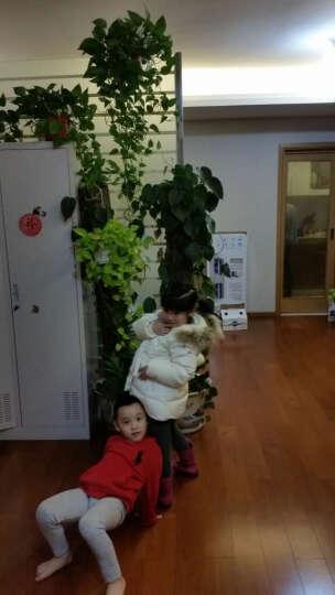 花样童依 儿童羽绒服男女童棉衣服宝宝3-4周岁半冬季小孩连帽大毛领羽绒棉袄 枚红 110 晒单图