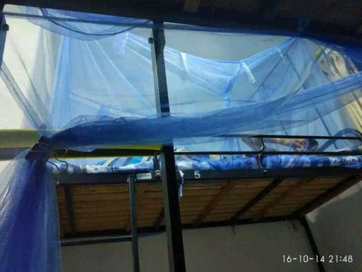爱莱欧 学生蚊帐 宿舍寝室上下铺加密单人双人 0.9米1.2米1. 学生蚊帐-粉红色 1.2m床 晒单图