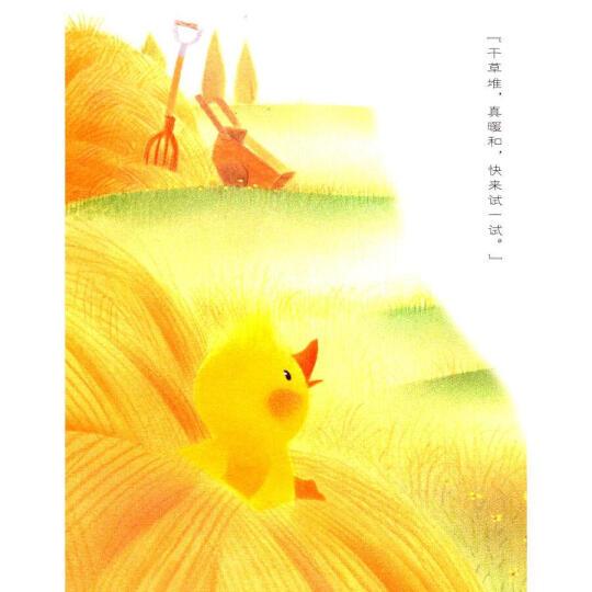 小鸡球球的故事:小鸡球球的春夏秋冬(平装) 晒单图