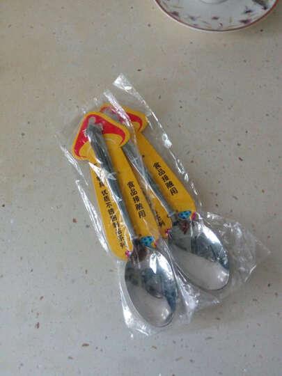 吉睿 筷勺/刀叉 钻石系列 1号不锈钢尖匙餐勺 CZ5021 晒单图