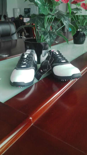 PGM 高尔夫球鞋 男款高尔夫 真皮 防滑透气 43码 晒单图