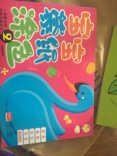 宝宝蒙纸涂色2:蔬菜、植物、昆虫、鸟类、常见物品 晒单图