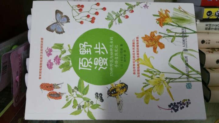 林中漫步 231种植物的手绘自然笔记+原野漫步 370种野花与88种昆虫的手绘自然笔记+2 晒单图