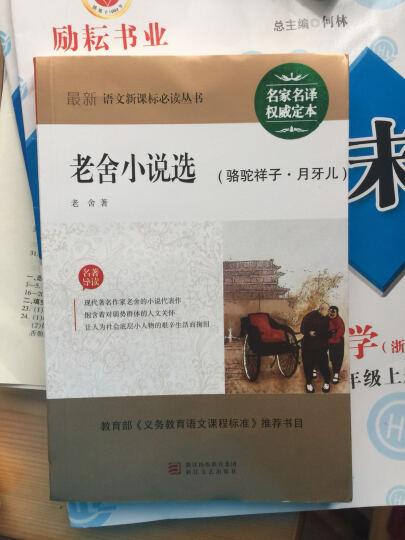 最新语文新课标必读丛书:老舍小说选(骆驼祥子·月牙儿) 晒单图