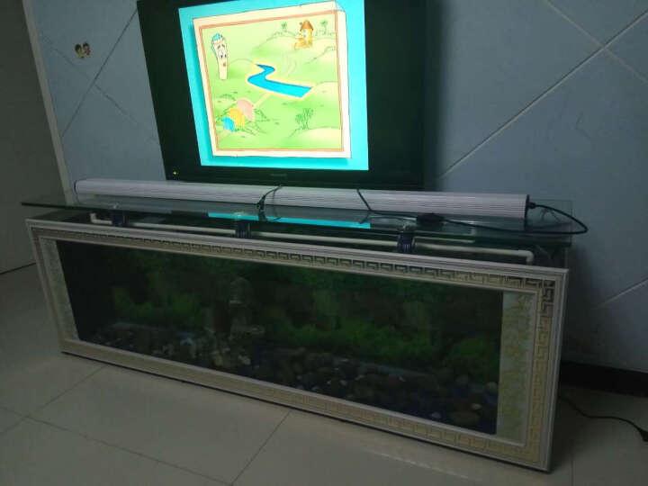 欧式电视柜生态鱼缸水族箱