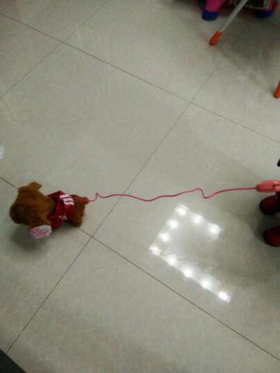 蓓茹儿 儿童电动玩具狗狗走路会唱歌仿真狗遥控机械狗牵绳毛绒小狗泰迪 连体衣红色(送礼包)48首(可调节音量) 晒单图