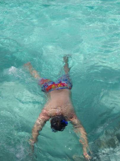 澳洲OCEANPRO欧铂 浮潜装备 平光浮潜镜 全干式呼吸管浮潜三宝潜水镜亚特兰蒂斯浮 三件套深海蓝S码(37-41) 脚蹼42-46 晒单图