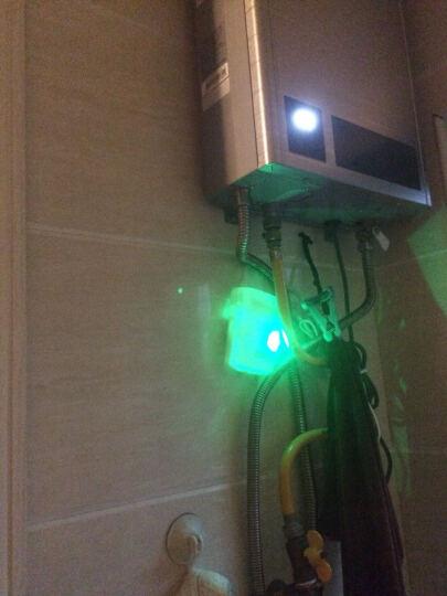 碧安居 家用燃气探测器报警器天然气液化气煤气可燃气体检测仪 报警器配件 燃气报警器 (C) 晒单图