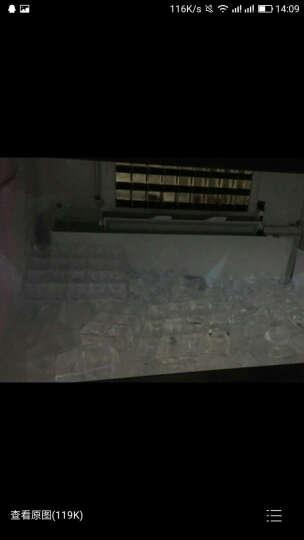 睿美(ruimei)商用炒冰机单锅双锅大功率炒酸奶机快速炒冰淇淋机水果炒冰机单压双压 双锅单压双控 晒单图