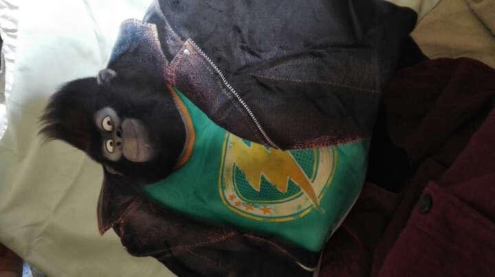 墙蛙wallwa 欢乐好声音SING正版电影双面抱枕午睡沙发靠垫 H款-韩特(霹雳小猪) 45x45cm【套+芯】 晒单图
