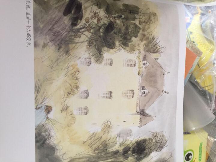 漂流瓶绘本馆·被遗忘的花园 晒单图
