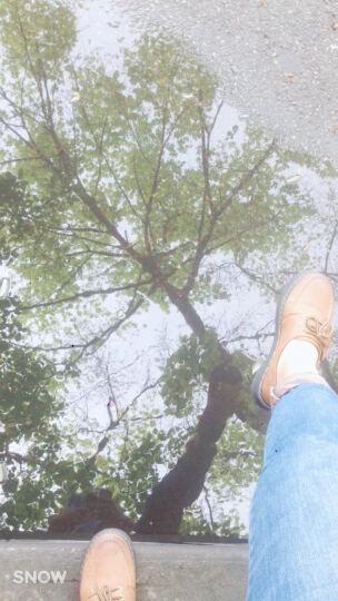 2017春季原宿小皮鞋女英伦学院风复古百搭日系中跟韩版潮学生女鞋 棕色 38 晒单图