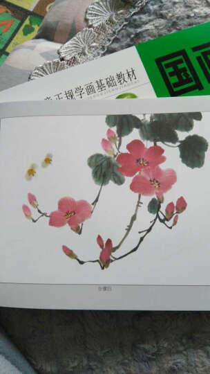 儿童正规学画基础教材:水粉(套装上下册) 晒单图