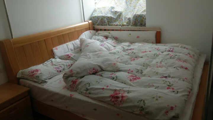 大梵林 床垫 弹簧加棕床垫 弹簧床垫 软硬两面床垫 白色 1500*1900 晒单图