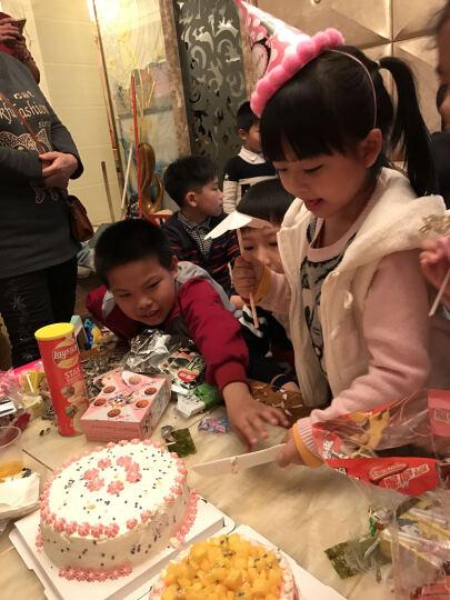 原装进口 惠尔通食用色素 圣诞翻糖蛋糕奶油裱花马卡龙调色28g 玫瑰红 晒单图