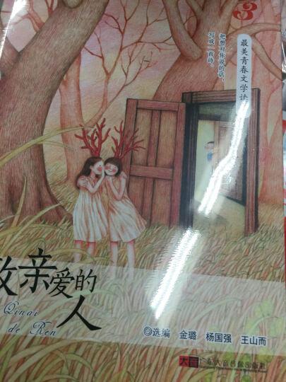 致亲爱的人--最美青春文学读本系列(1书+1CD) 晒单图