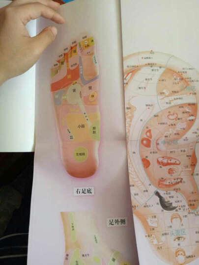 手到病自除1:自然反射疗法特效使用手册(典藏版) 晒单图