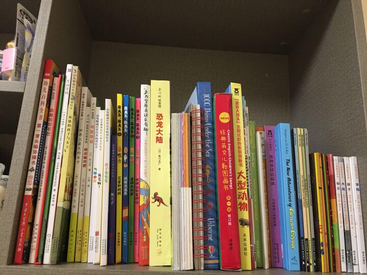 天星童书·全球精选绘本:老鼠家族系列(套装共3册) 晒单图