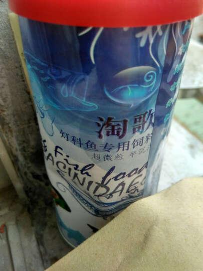 淘歌(TG) 淘歌鱼粮热带观赏鱼小型鱼灯科鱼饲料微小粒鱼食饲料 100g 晒单图