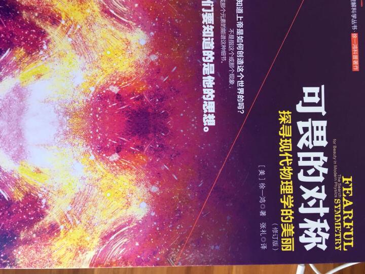 理解科学丛书·可畏的对称:探寻现代物理学的美丽 晒单图