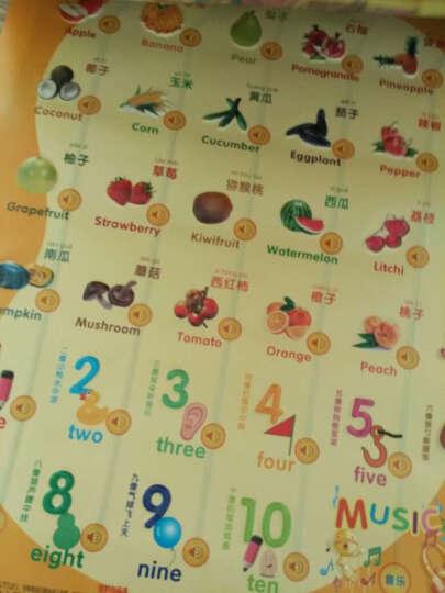 澳乐 爱心有声挂图5件套装 宝宝益智玩具婴幼儿童凹凸识字卡(动物+人物+果蔬+认数+英文)ZH-160716001Q 晒单图