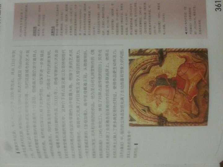 图解欧洲艺术史:14世纪 晒单图