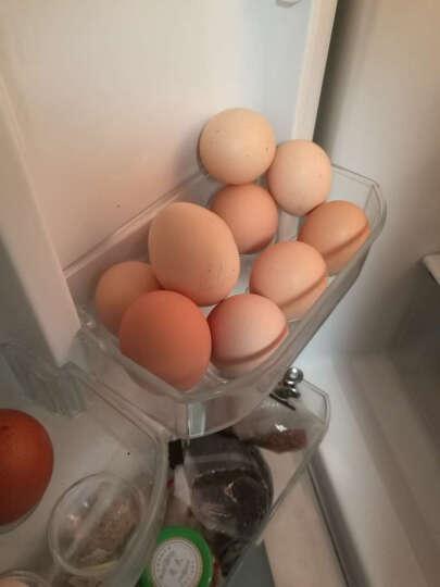 圣迪乐村 我迷家OMG 儿童营养鸡蛋 15枚 750g 粉壳蛋 晒单图
