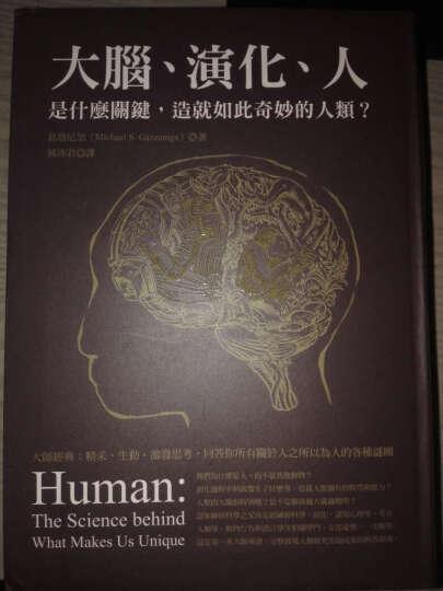大腦、演化、人:是什麼關鍵,造就如此奇妙的人類? 晒单图