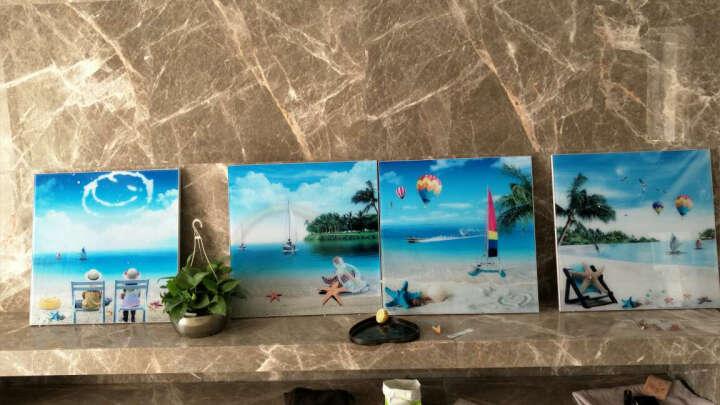 立客美 海边沙滩风景客厅装饰画地中海风格冰晶玻璃壁画卧室床头三联画沙发背景墙无框画海星贝壳 C款三联画(更多精美图案请移动鼠标往祥情页查看) 50*70      25MM纳米冰晶玻璃 晒单图