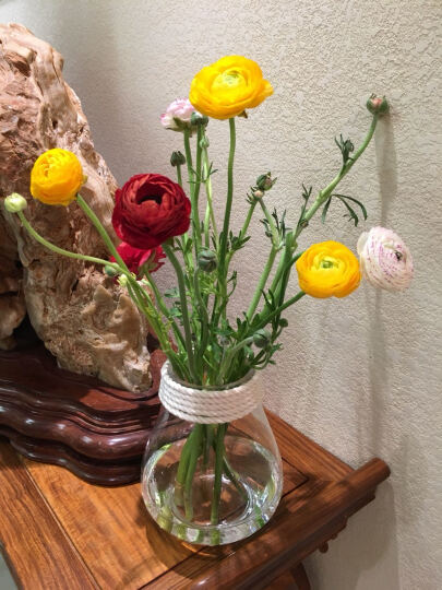 星川 玻璃花瓶透明简欧麻绳水培花器摆件客厅餐桌仿真花套装 中号花瓶+法式玫瑰 晒单图