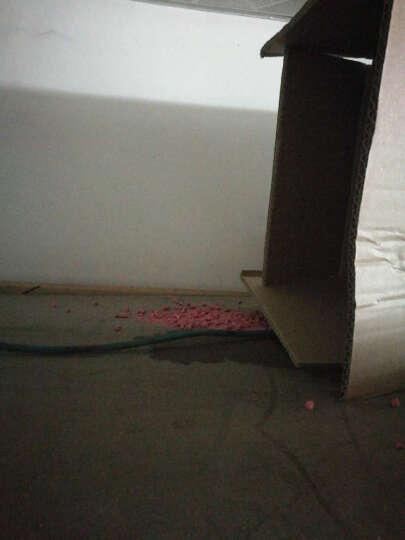 乐兆虫控【买2送1】灭杀老鼠药毒鼠强液体固体喷剂家用耗子老鼠贴粘鼠板老鼠夹捕鼠器500g 仿肉灭鼠药 晒单图