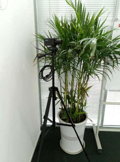 ONTOP无线蓝牙音响便携插卡音响迷你音箱带fm收音MP3 台式电脑音箱多媒体USB低音炮 无线蓝牙音箱-充电宝版 晒单图