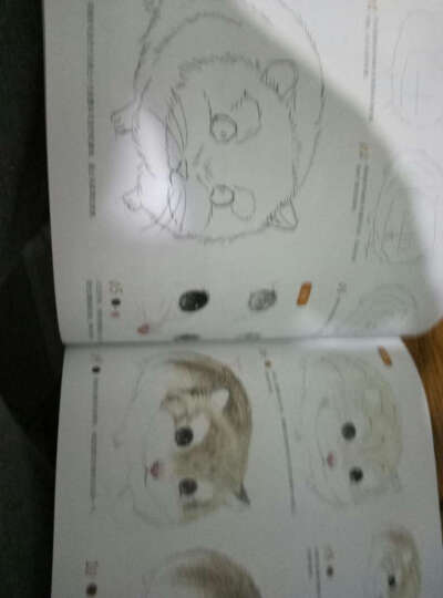呆萌小动物画起来绘森活色铅笔画彩铅画自学入门基础教程喵星人小兔子猫咪可爱动物素描教材书籍 晒单图