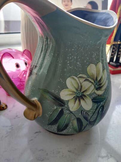英伦欧堡 欧式陶瓷花瓶花艺 花壶花器田园家居客厅装饰品摆设 DV0124-0093绿色花. 晒单图