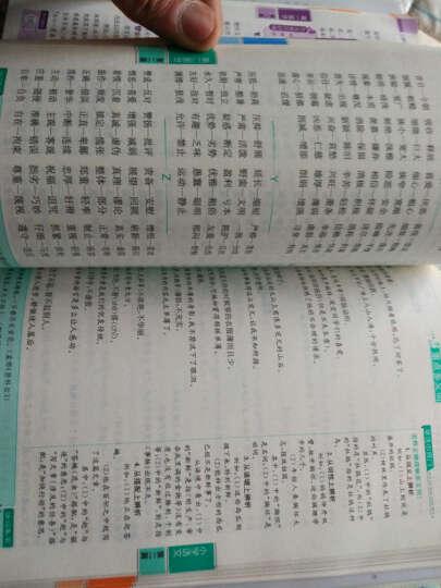 2016版 小学语文 基础知识手册 晒单图