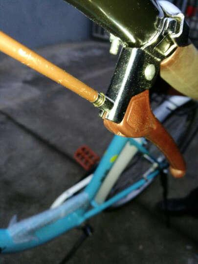 凤凰(Phoenix) 凤凰城市自行车女式24/26寸学生男女复古公主淑女单车休闲通勤车 24寸莉莉 蓝色 晒单图