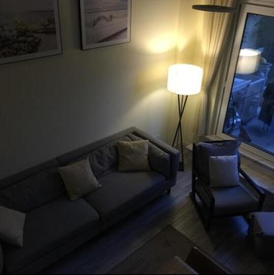 赫曼北欧落地灯长臂装饰台灯卧室床头灯客厅简约现代婚庆布艺创意时尚台地灯温馨 LE8045经典台灯 晒单图
