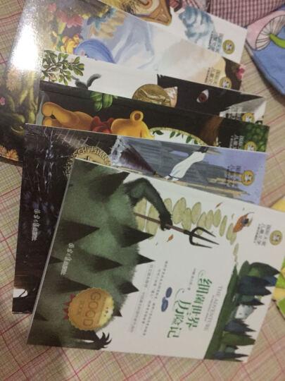 全6册 吹牛皮大王+细菌世界+丛林+小熊维尼+洋葱头+假话国 历险记 国际大奖儿童文学 晒单图