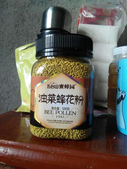 五台山 蜜蜂园 油菜花粉500g 非破壁蜂花粉 纯净天然农家油菜蜂花粉 晒单图