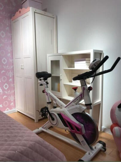 韩国智能动感单车 超静音家用室内健身车脚踏车自行车磁控运动减肥器健身器材 飞轮重量8公斤 晒单图