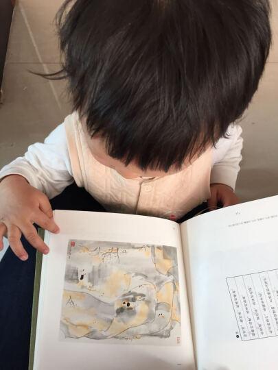宝宝认知纸板书·形状:你好,你是谁? 晒单图