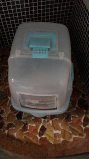 布袋熊 防外溅 糖果色猫砂盆 猫厕所 宠物厕所 带猫砂铲 猫便盆 猫沙盆 猫用品 猫尿盆 粉色透明盖大号 晒单图