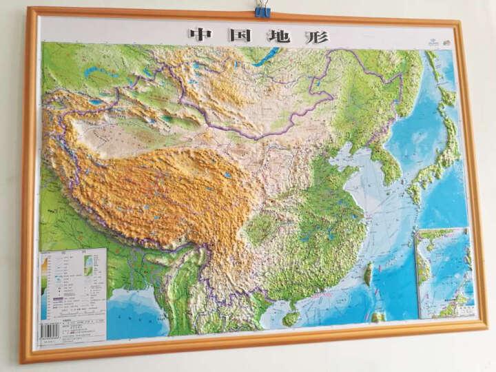 【精雕版·悦读】立体地图 76*57cm 中国地形图+世界地形图 直观展示凹凸3D地貌 晒单图