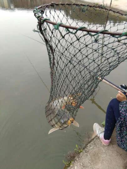自动钓鱼竿自动钓竿弹簧竿支架海竿抛竿套装海杆海竿套装2代双插自动竿 双插2.4米+12轴金属+礼包 晒单图