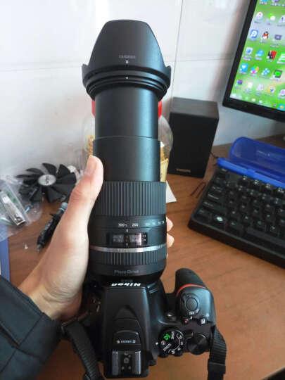 腾龙(Tamron)16-300mm F/3.5-6.3 Di II VC PZD MACRO [B016] 半画幅全能中远摄大变焦镜头(尼康卡口) 晒单图