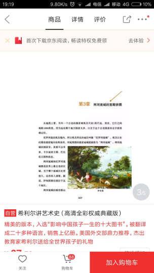 希利尔讲艺术史(高清全彩权威典藏版) 晒单图