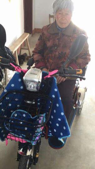 泰合 双人电动三轮车老年代步车老人电动代步车三轮电动车 106-8差速电机 电动车48v20安锂电池 晒单图