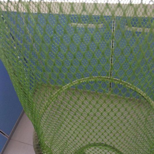 比尔傲威(billalways)涂胶防挂鱼护 鱼网兜鱼篓装鱼网袋渔具 竞技精品 45cm*2.5米果绿色 晒单图