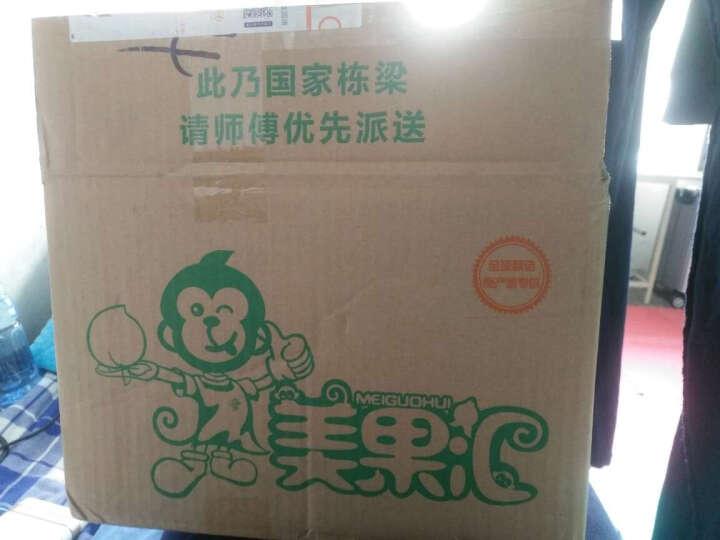 美果汇 广西大金煌 青皮芒 现摘大芒果 生鲜水果 3斤单果200-300g 晒单图